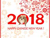 Happy Chinese New Year! image